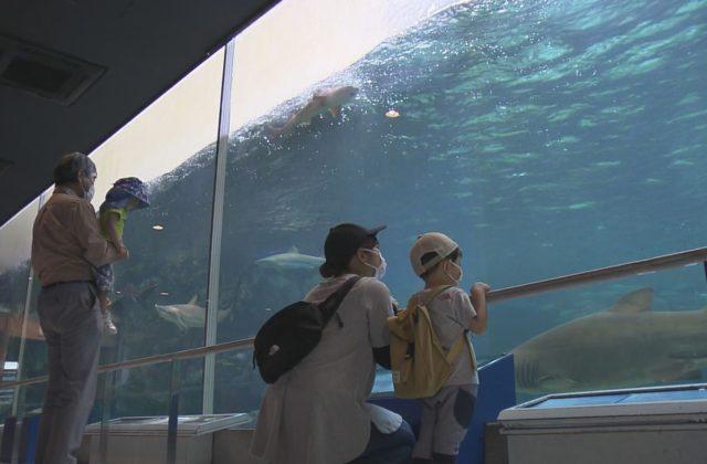 須磨海浜水族園が約3カ月ぶりに営業再開
