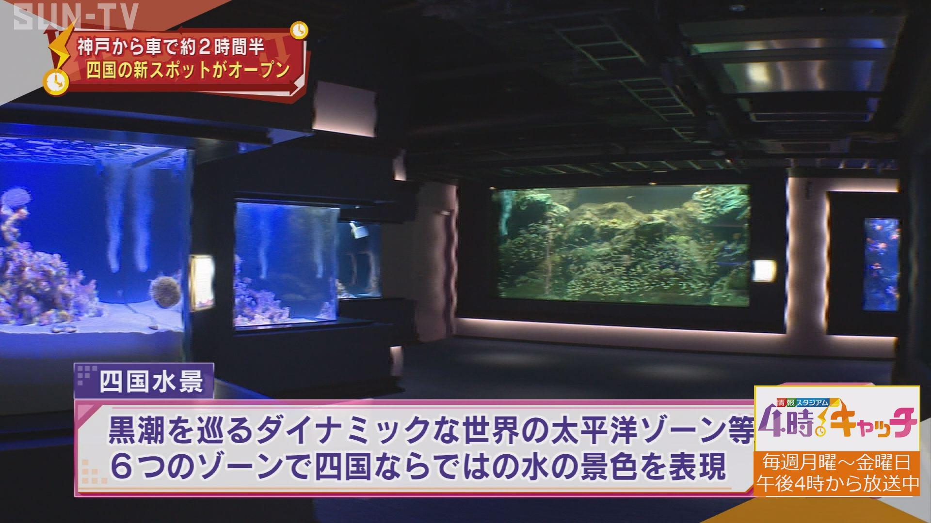 水族館 オープン 四国